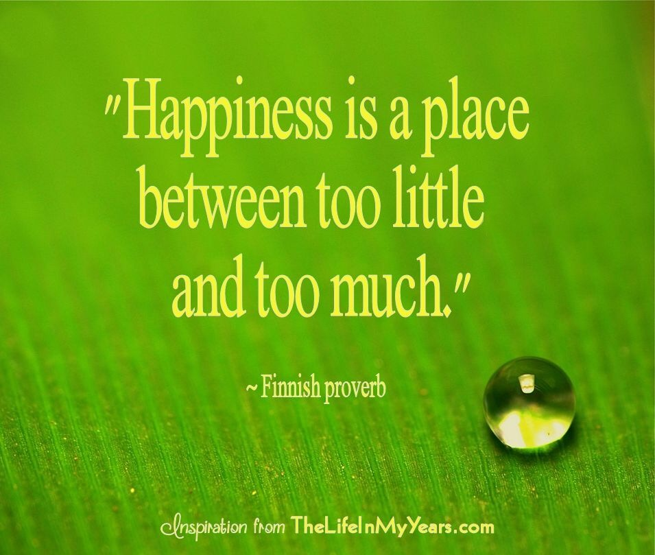 Happiness is a place betweentoo little and too much!